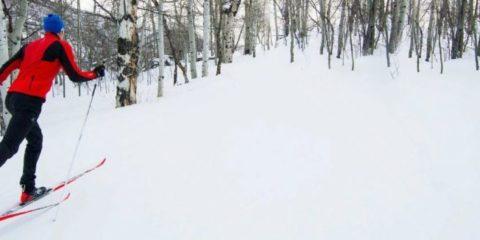 Activities-XC-Skiing-Landing-Page-1024x326
