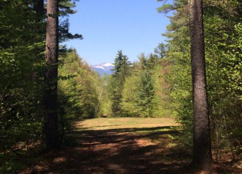 hiking_header-1024x532