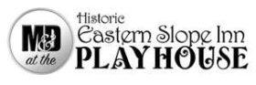 M & D Playhouse Logo small